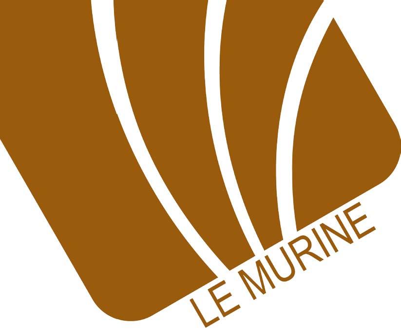 Le-Murine-Rivestimenti-forte