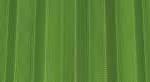 zanzariera-plisse-verde-mela